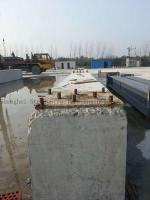 Dry Mortar Production Lion